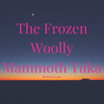 Frozen Woolly Mammoth Yuka