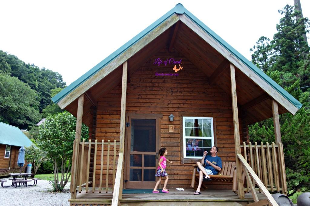 Tama Hills standard cabin