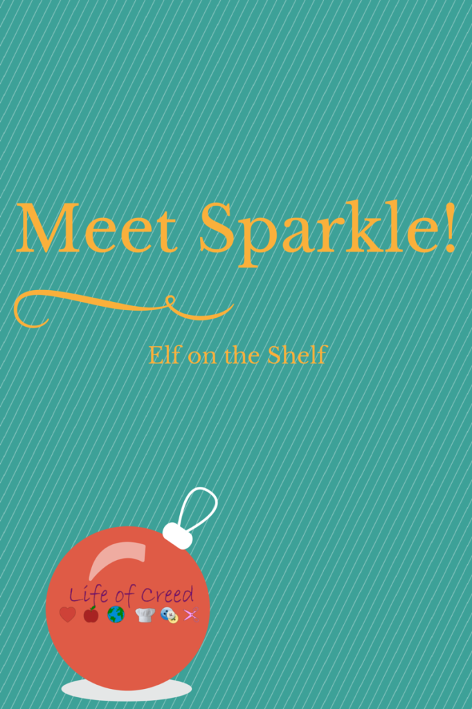 Meet Sparkle Elf on the Shelf