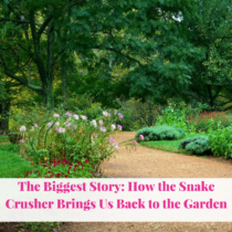 The Biggest Story: How the Snake Crusher Brings Us Back to the Garden