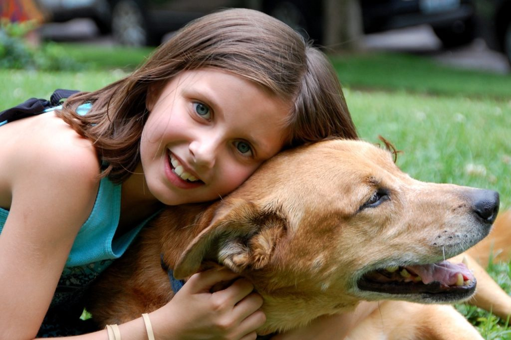 How pets can help you with homeschooling